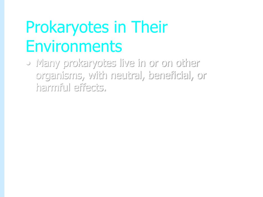 Prokaryotes in Their Environments