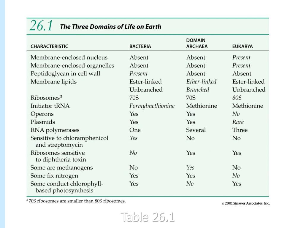 table 26-01.jpg