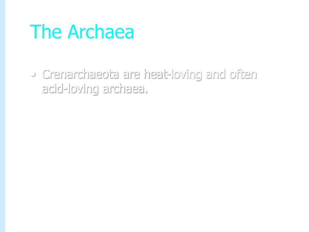 The Archaea