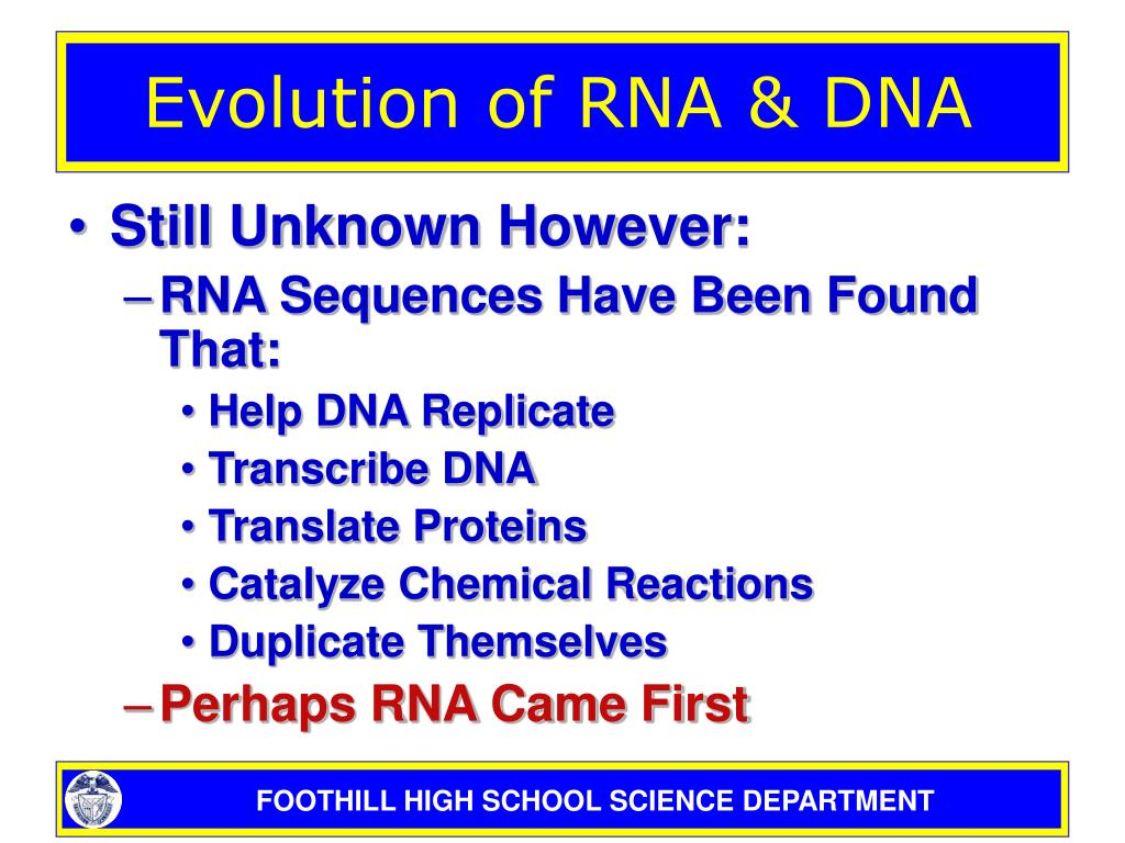 a study about rna evolution and the origins of life The idea that life began with rna  implications for our understanding of life's origins  of the foundation for applied molecular evolution in.