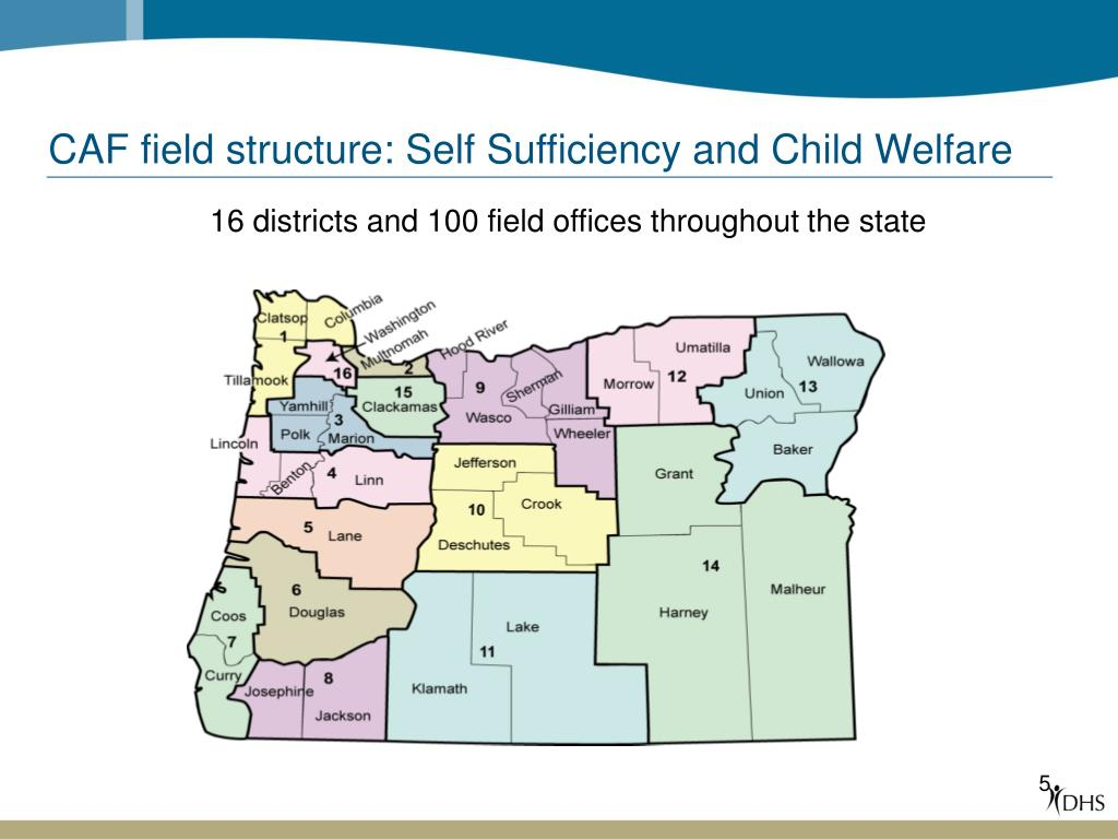 CAF field structure: Self Sufficiency and Child Welfare