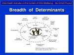 breadth of determinants