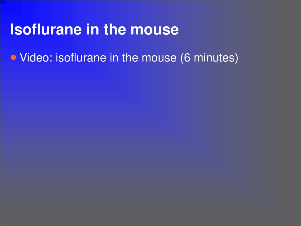Isoflurane in the mouse