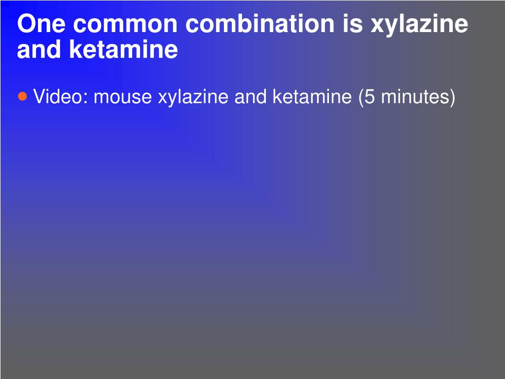 One common combination is xylazine and ketamine