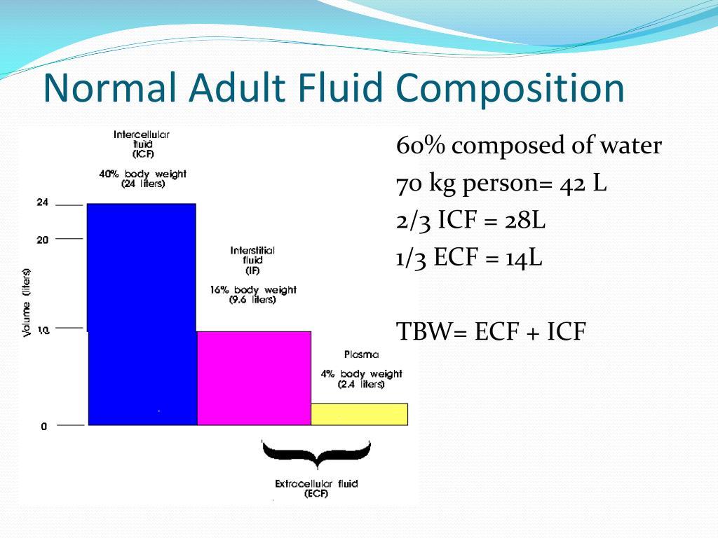 Normal Adult Fluid Composition
