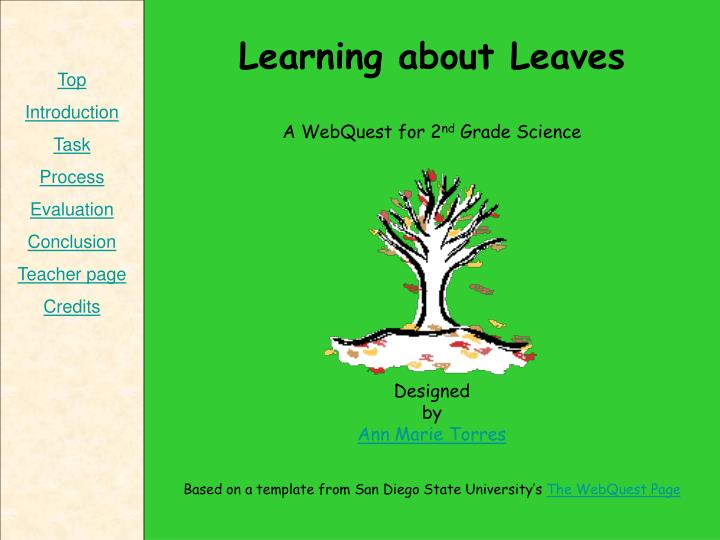 Learning about Leaves