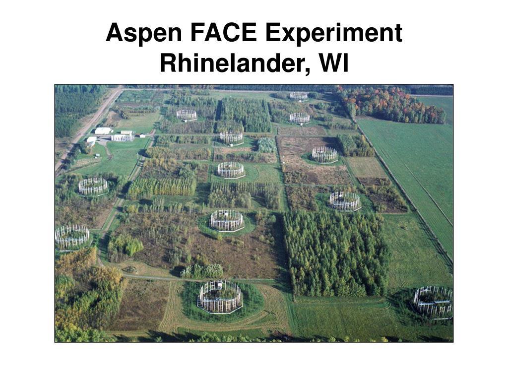 Aspen FACE Experiment