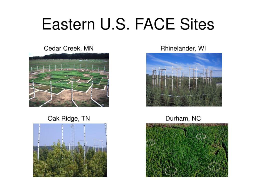 Eastern U.S. FACE Sites