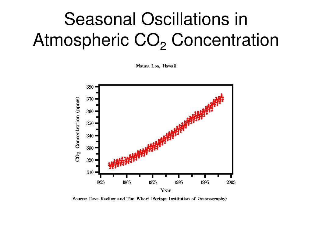 Seasonal Oscillations in Atmospheric CO