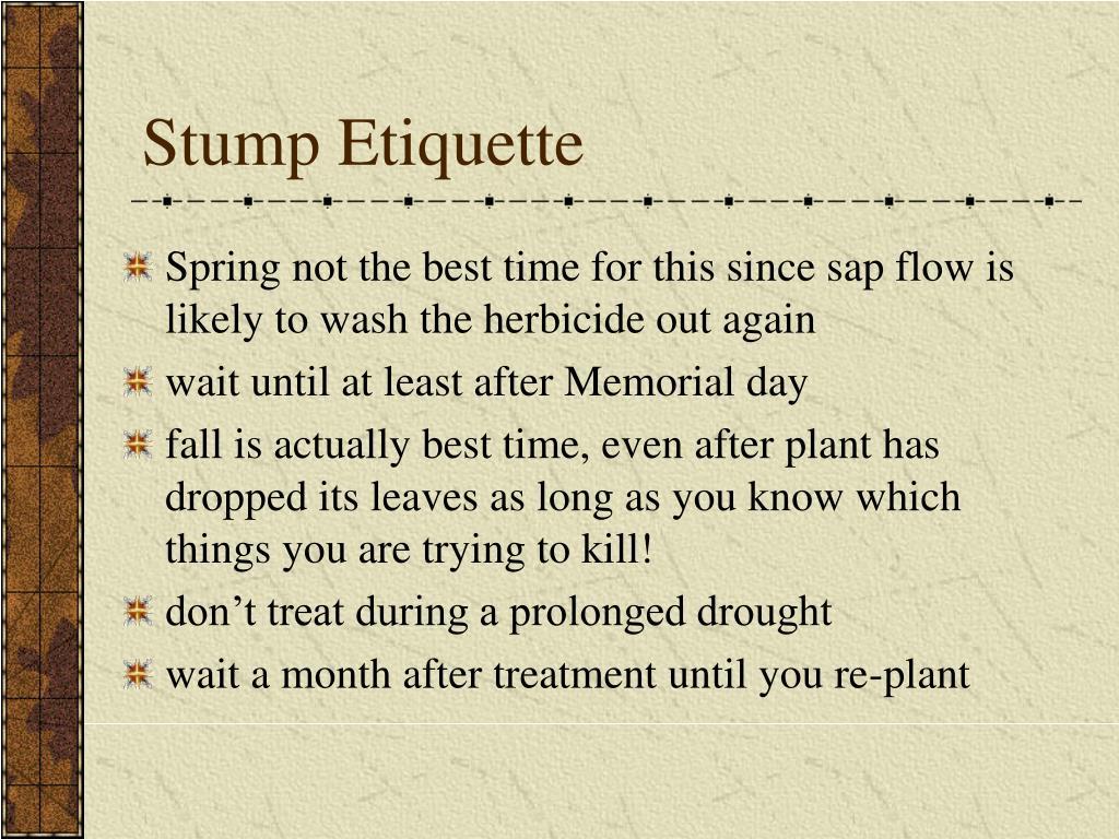 Stump Etiquette