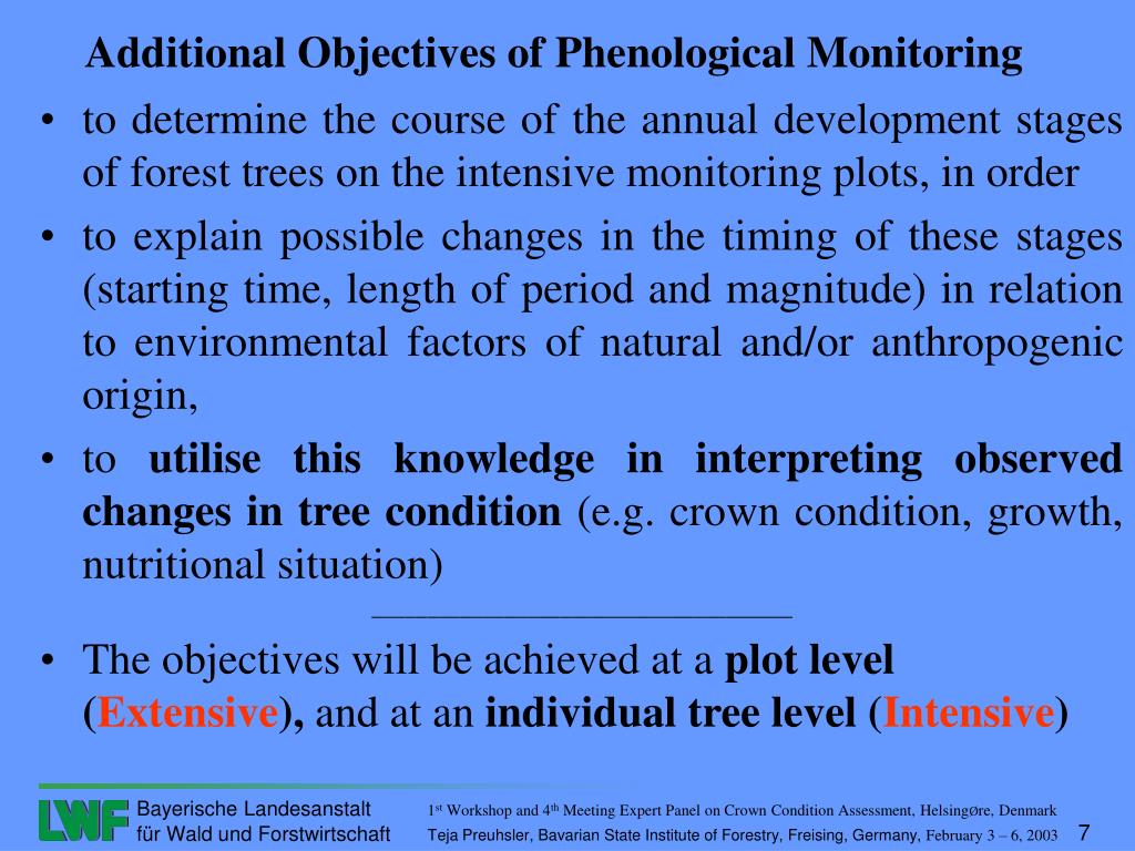 to determine the course of the annual development stages of forest trees on the intensive monitoring plots, in order