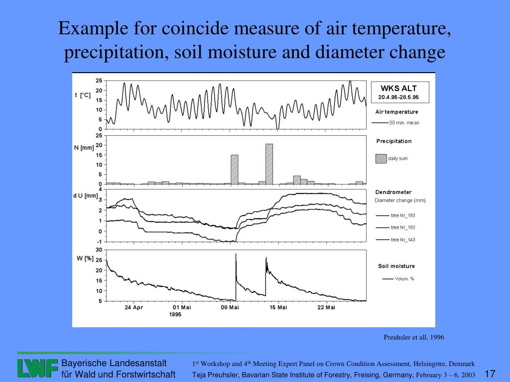 Example for coincide measure of air temperature, precipitation, soil moisture and diameter change