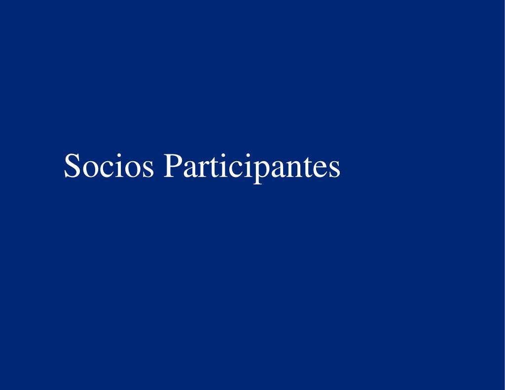 Socios Participantes