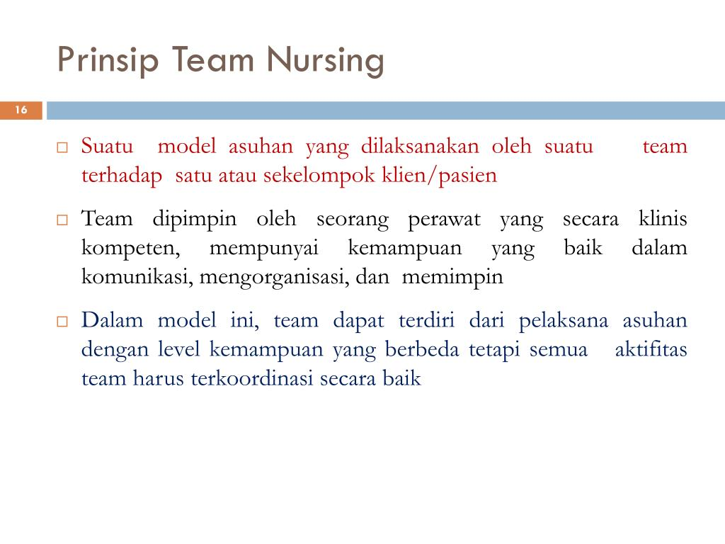 Prinsip Team Nursing