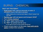 burns chemical13