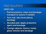 pad injuries54