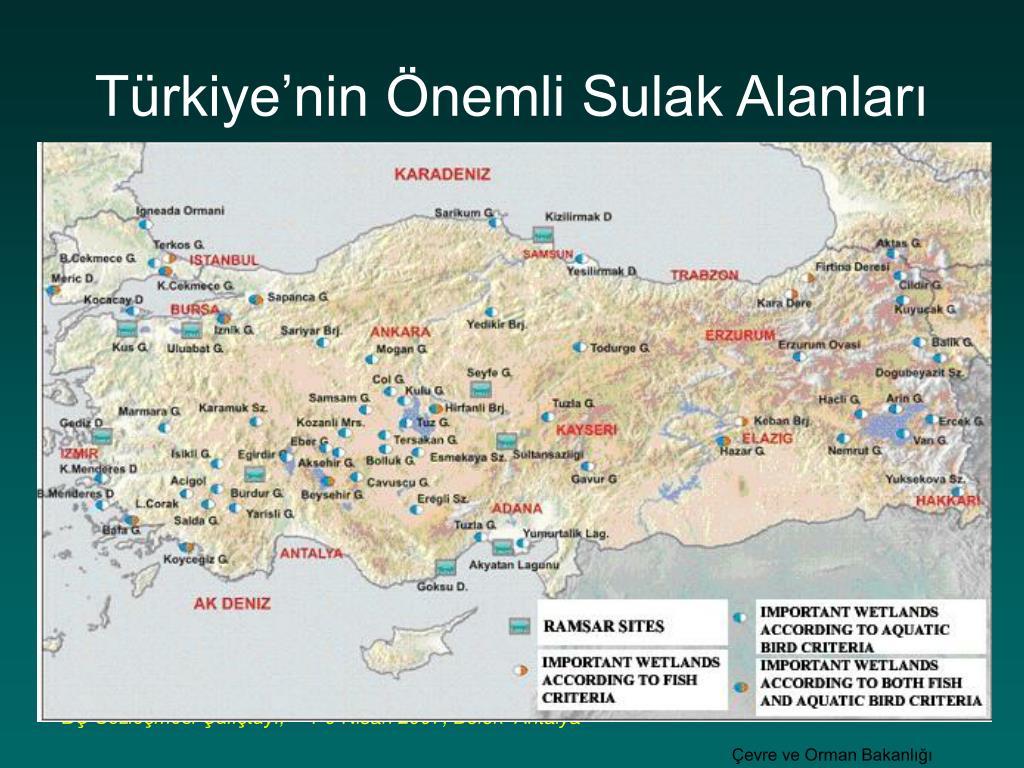 Türkiye'nin Önemli Sulak Alanları