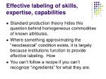 effective labeling of skills expertise capabilities