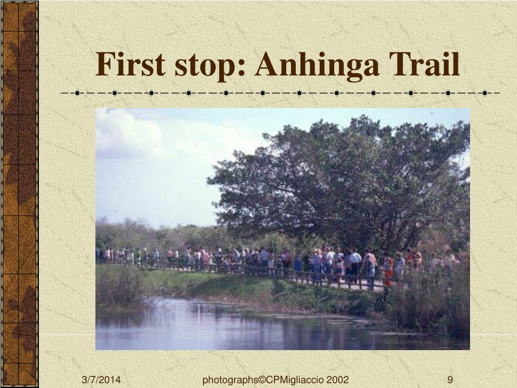 First stop: Anhinga Trail