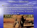 animals drawing