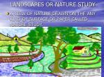 landscapes or nature study