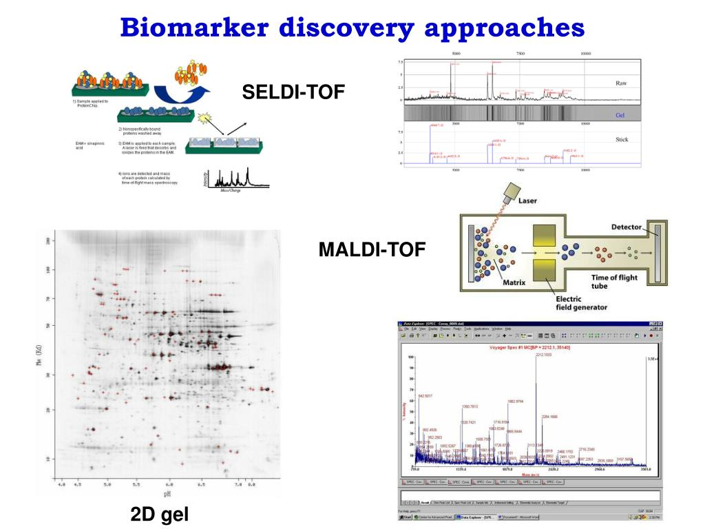 Biomarker discovery approaches
