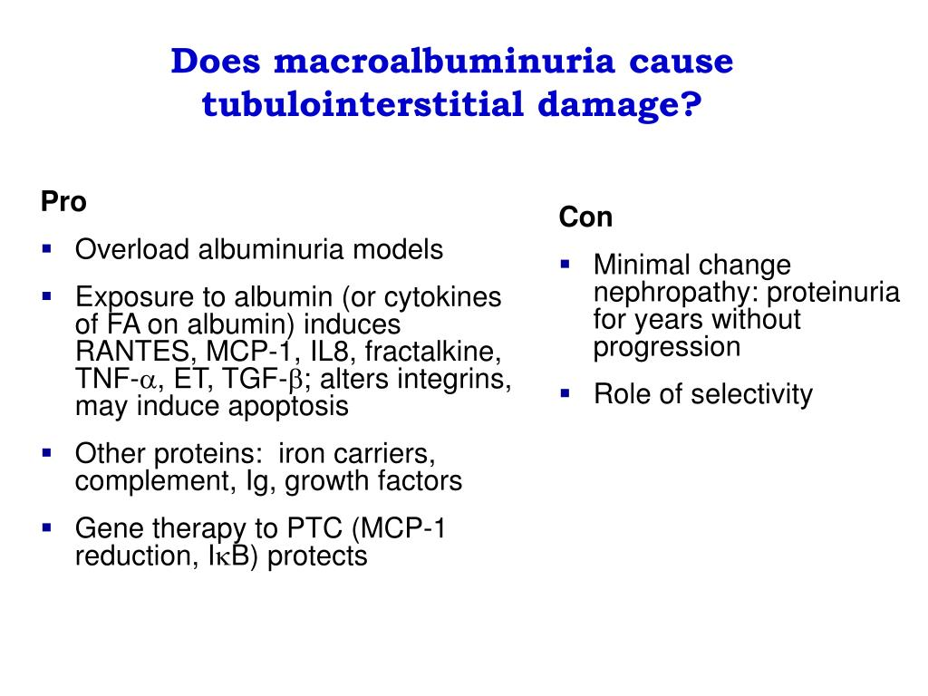Does macroalbuminuria cause tubulointerstitial damage?