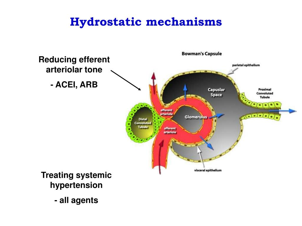 Hydrostatic mechanisms