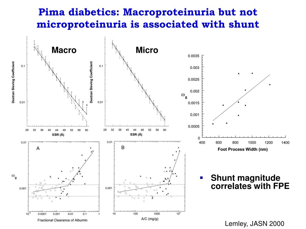 Pima diabetics: Macroproteinuria but not microproteinuria is associated with shunt