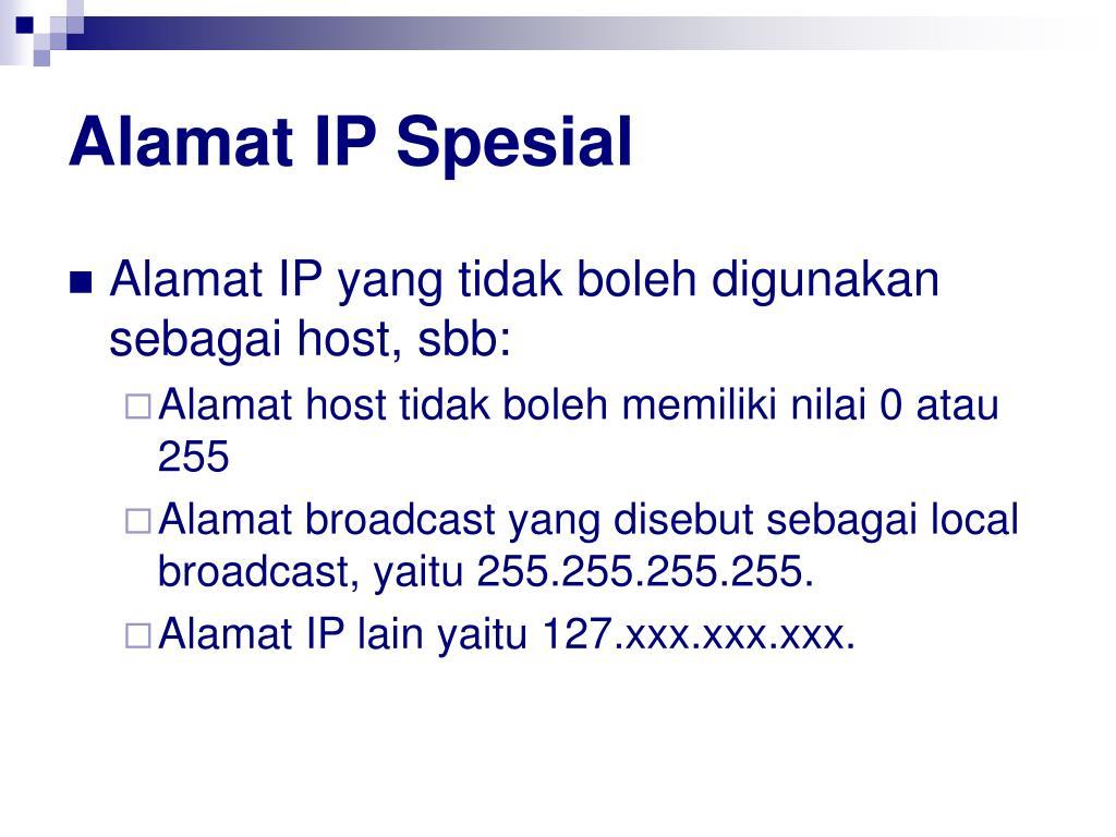 Alamat IP Spesial