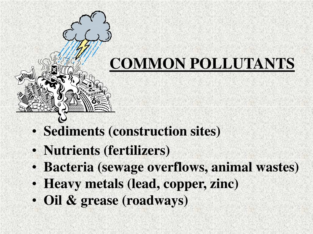 COMMON POLLUTANTS