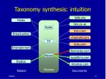 taxonomy synthesis intuition14