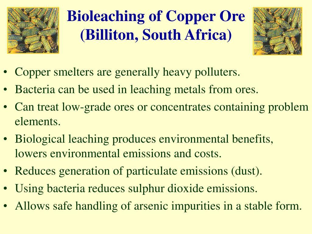 Bioleaching of Copper Ore