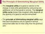 the principle of diminishing marginal utility