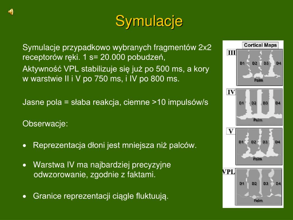 Symulacje