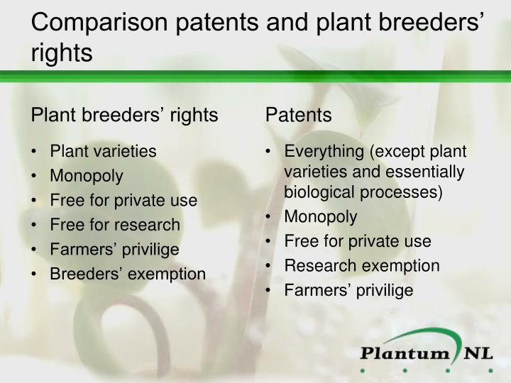 Comparison patents and plant breeders' rights