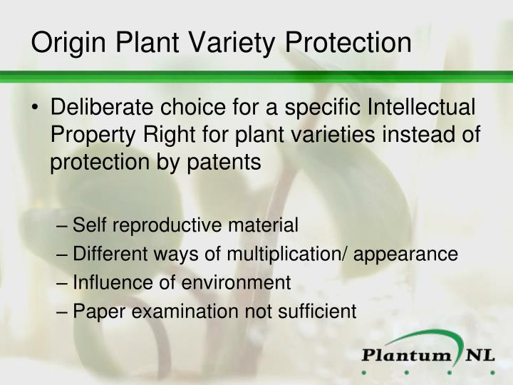 Origin Plant Variety Protection