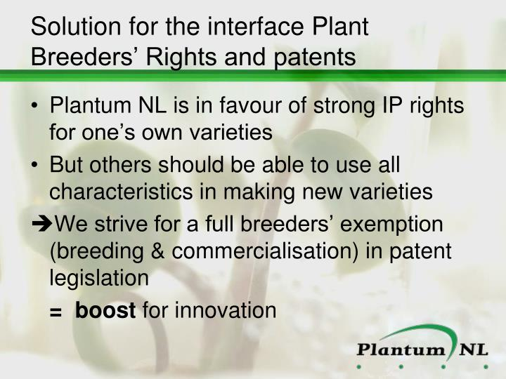 Solution for the interface Plant Breeders' Rights and patents