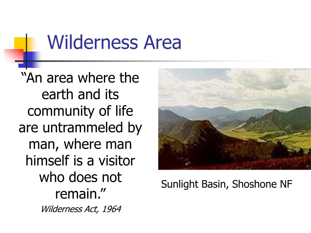 Wilderness Area