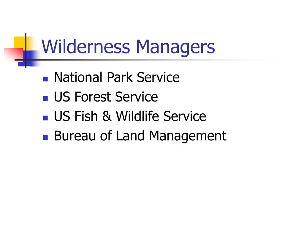Wilderness Managers