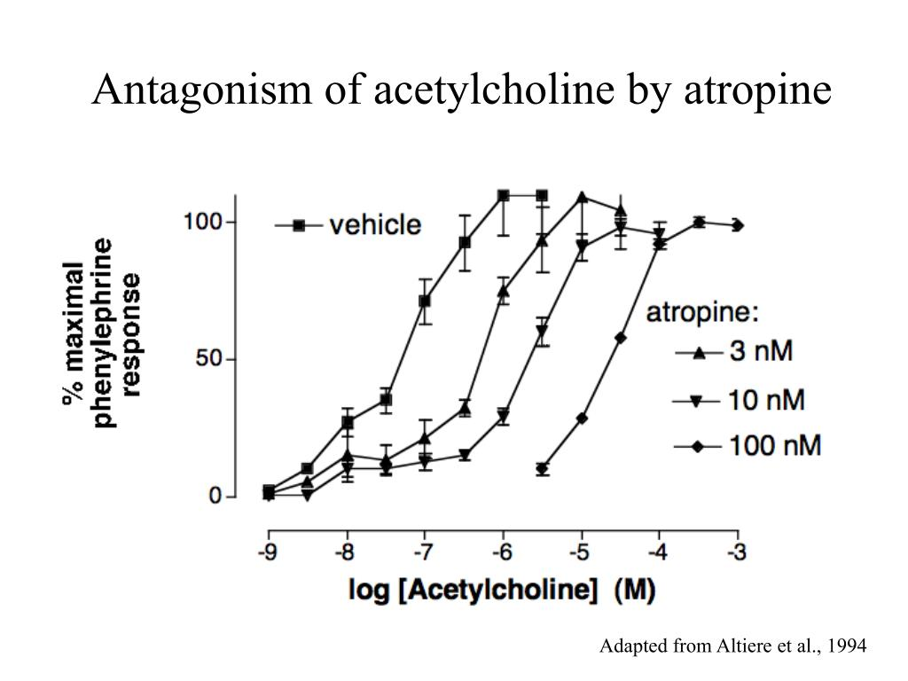 Antagonism of acetylcholine by atropine