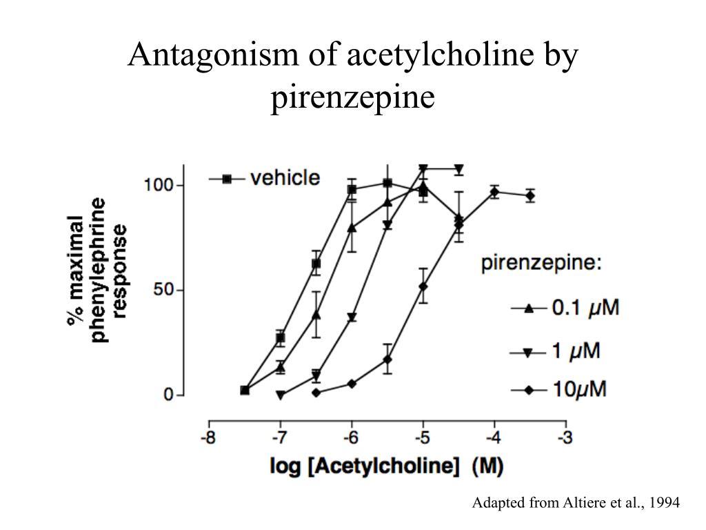 Antagonism of acetylcholine by pirenzepine
