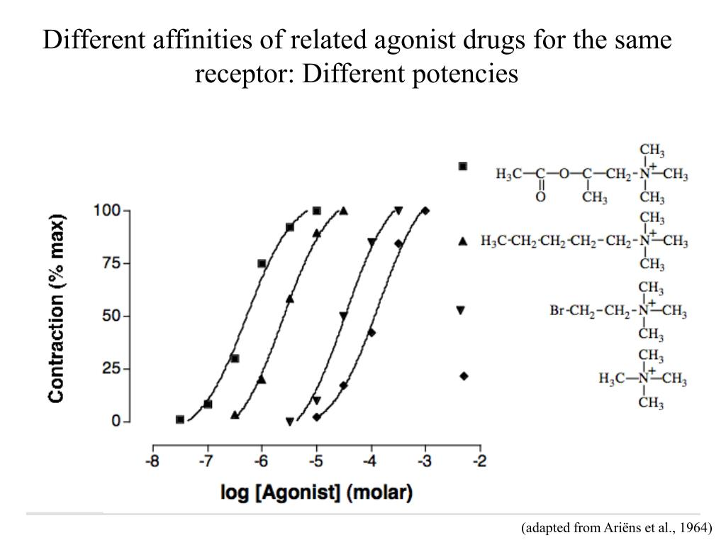 Different affinities of related agonist drugs for the same receptor: Different potencies