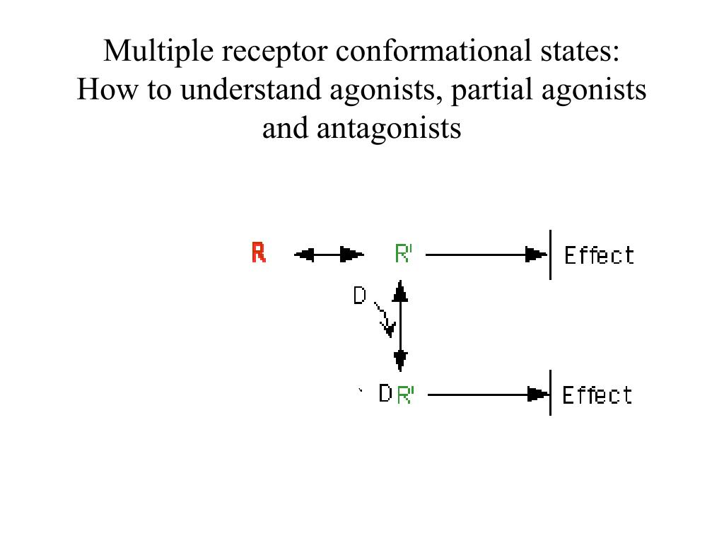 Multiple receptor conformational states:
