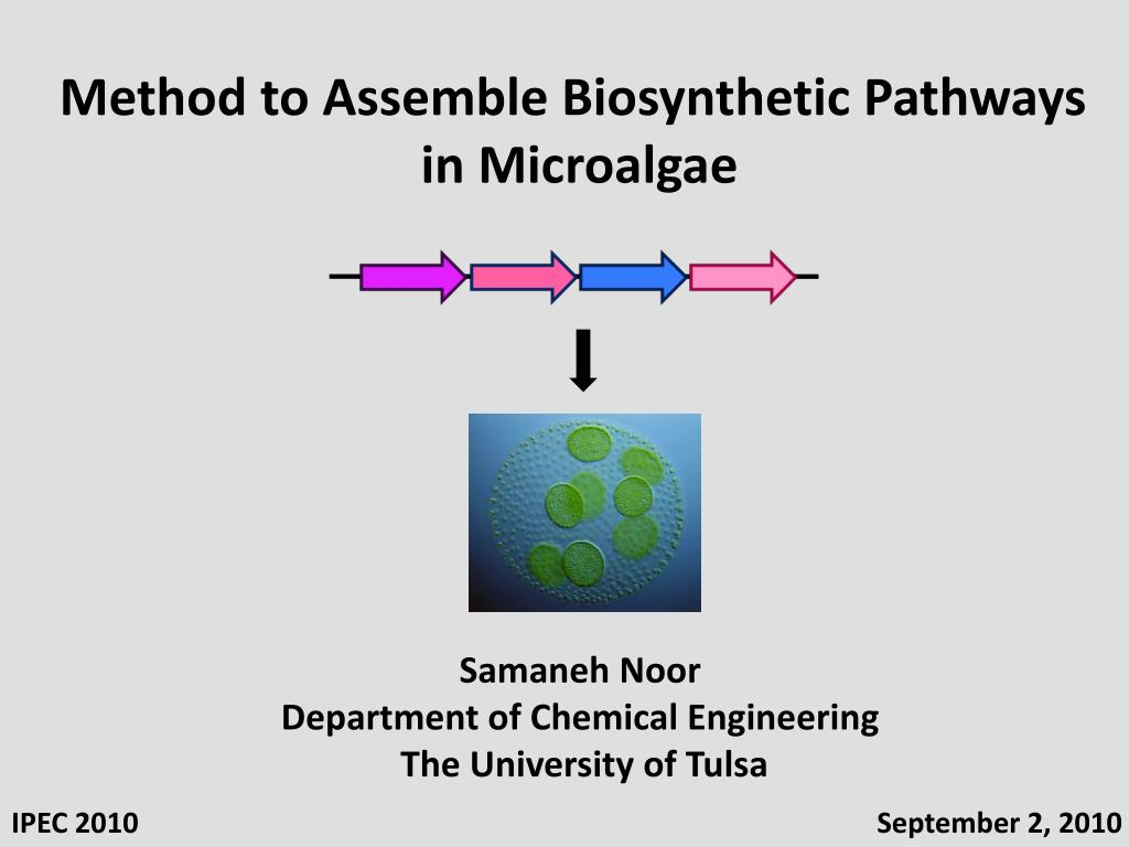 Method to Assemble Biosynthetic Pathways
