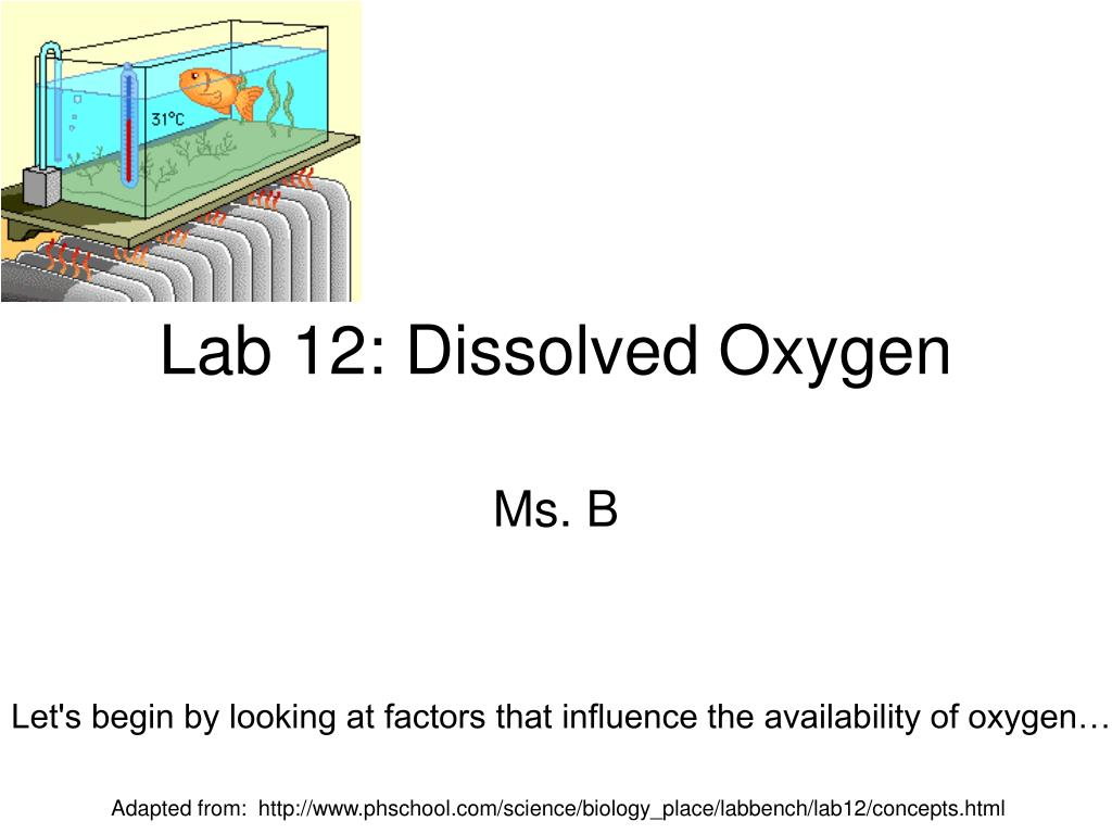 dissolved oxygen laboratory report essay In this experiment, potassium thiosulfate was used to titrate water sample  collected in wetland at school in order to simulate and determine the.