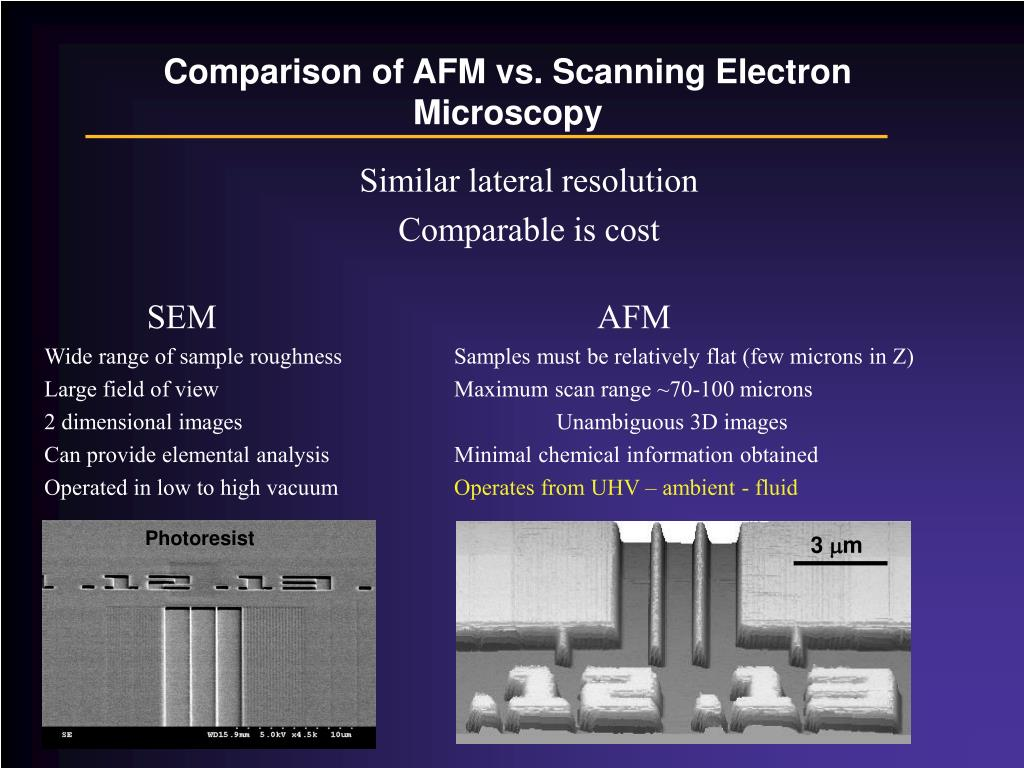 Comparison of AFM vs. Scanning Electron Microscopy