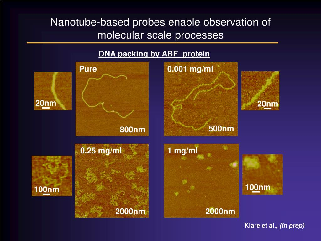 Nanotube-based probes enable observation of molecular scale processes