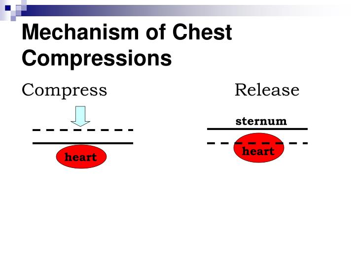Mechanism of Chest Compressions