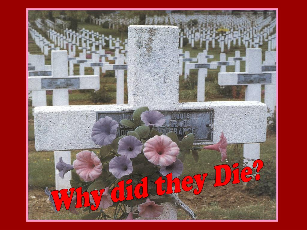 Why did they Die?